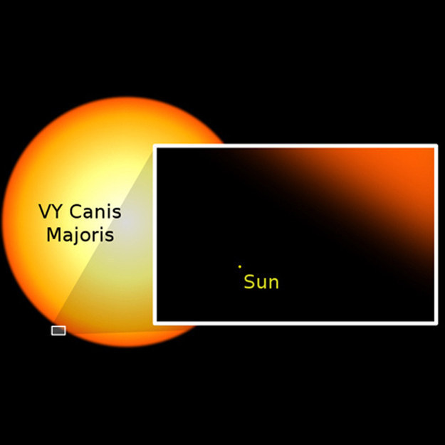 17_canis_sun